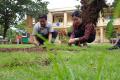 Hoạt động trồng cây xanh của giáo viên